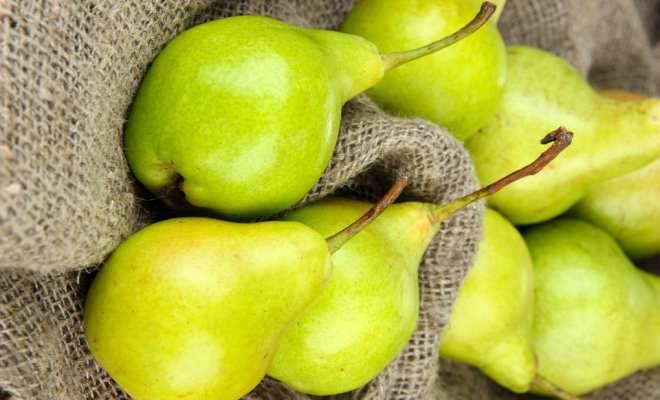 «Свердловчанка» формирует плоды с очень хорошим товарным видом