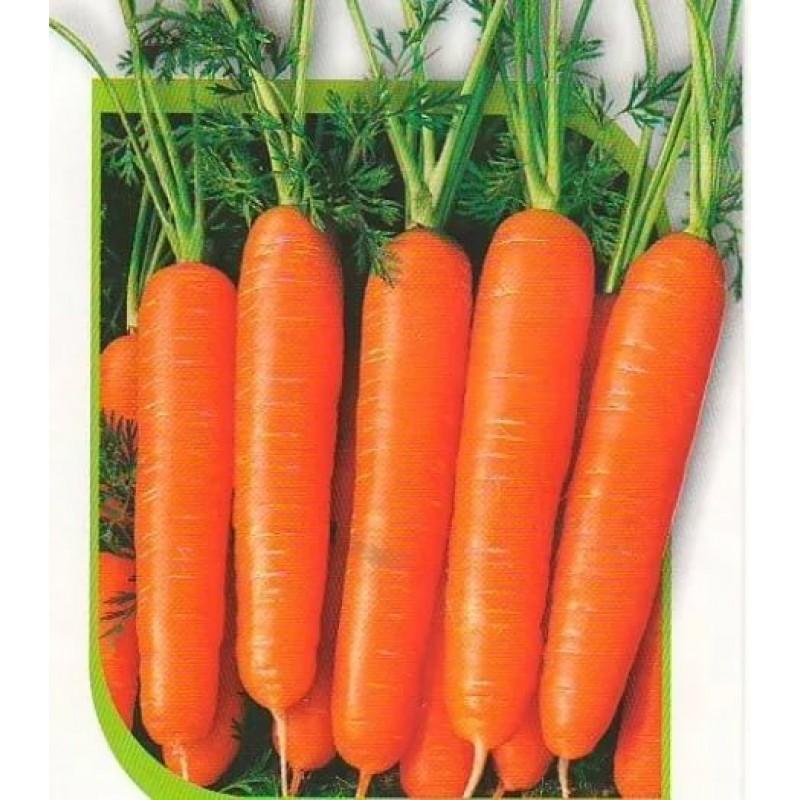 морковь дордонь