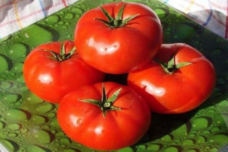 плоды томата взрыв