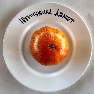 томат жемчужина джанет