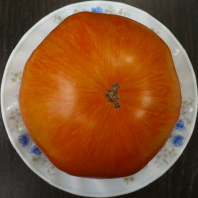 характеристика томат жемчужина джанет