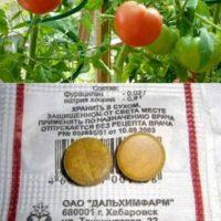 3 фурацилин от фитофторы на помидорах отзывы