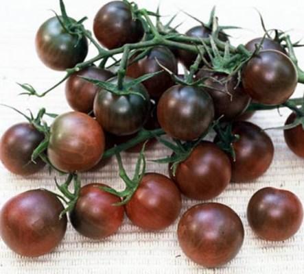 достоинства томата черная жемчужина