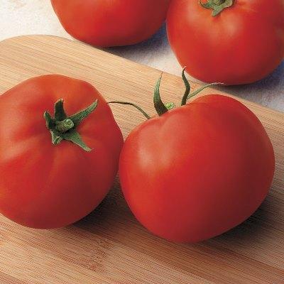 применение томата джина