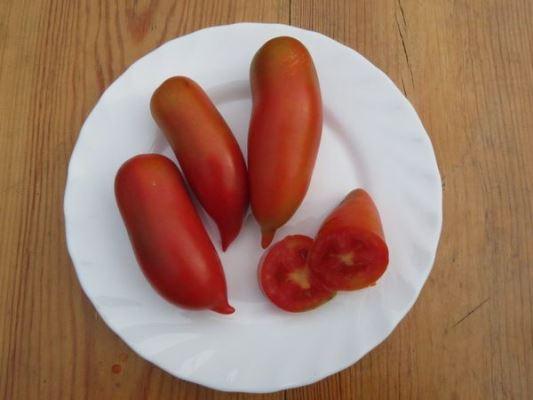 вкус томата хохлома