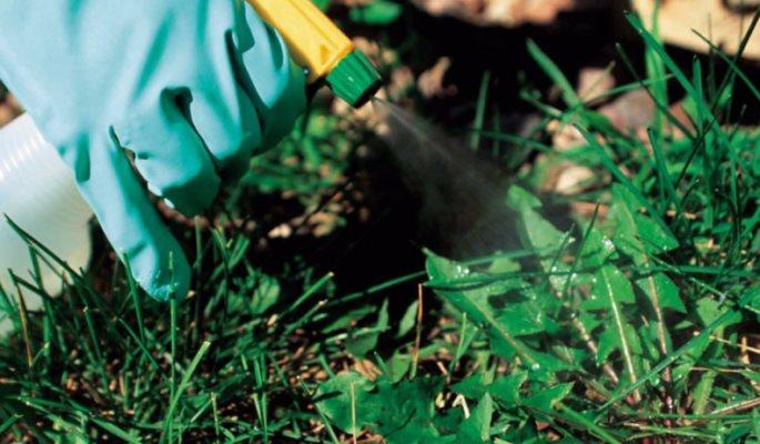 как применять гербициды