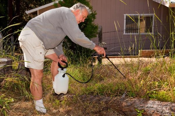 как применять ураган форте от сорняков