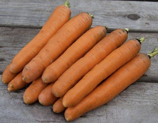 морковь роял описание