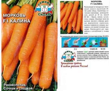 рейтинг моркови для сибири