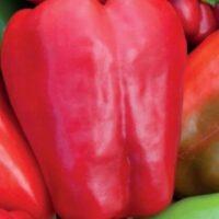 перец красные щечки