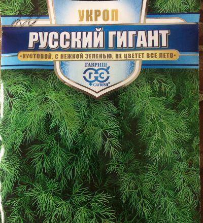 укроп русский гигант