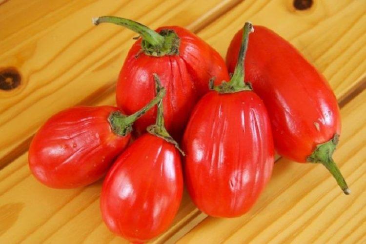 красный баклажан