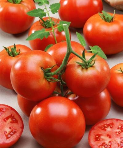 помидор зефир f1