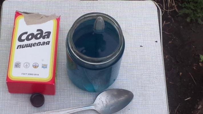 обработка томатов от фитофторы йод сода