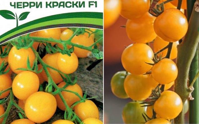томат краски отзывы фото
