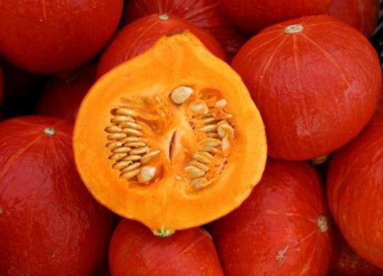 сорт тыквы оранжевое солнце