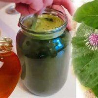 сок лопуха с медом лечебные свойства